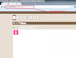 koekoe_cap1
